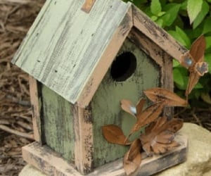 bird house, nice, and outside image