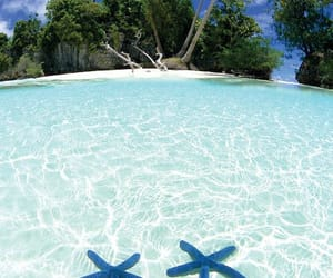 Island, tropical, and water aesthetic image