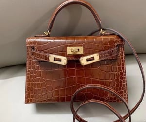 bag, brown, and luxury image