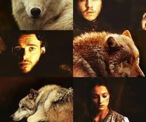 stark, sansa stark, and got image