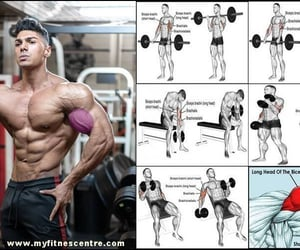bicep, fitness, and workout image
