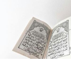 dz, hijab, and iran image