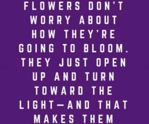 beautiful, bloom, and mental health image