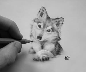 art, dogs, and baby animals image