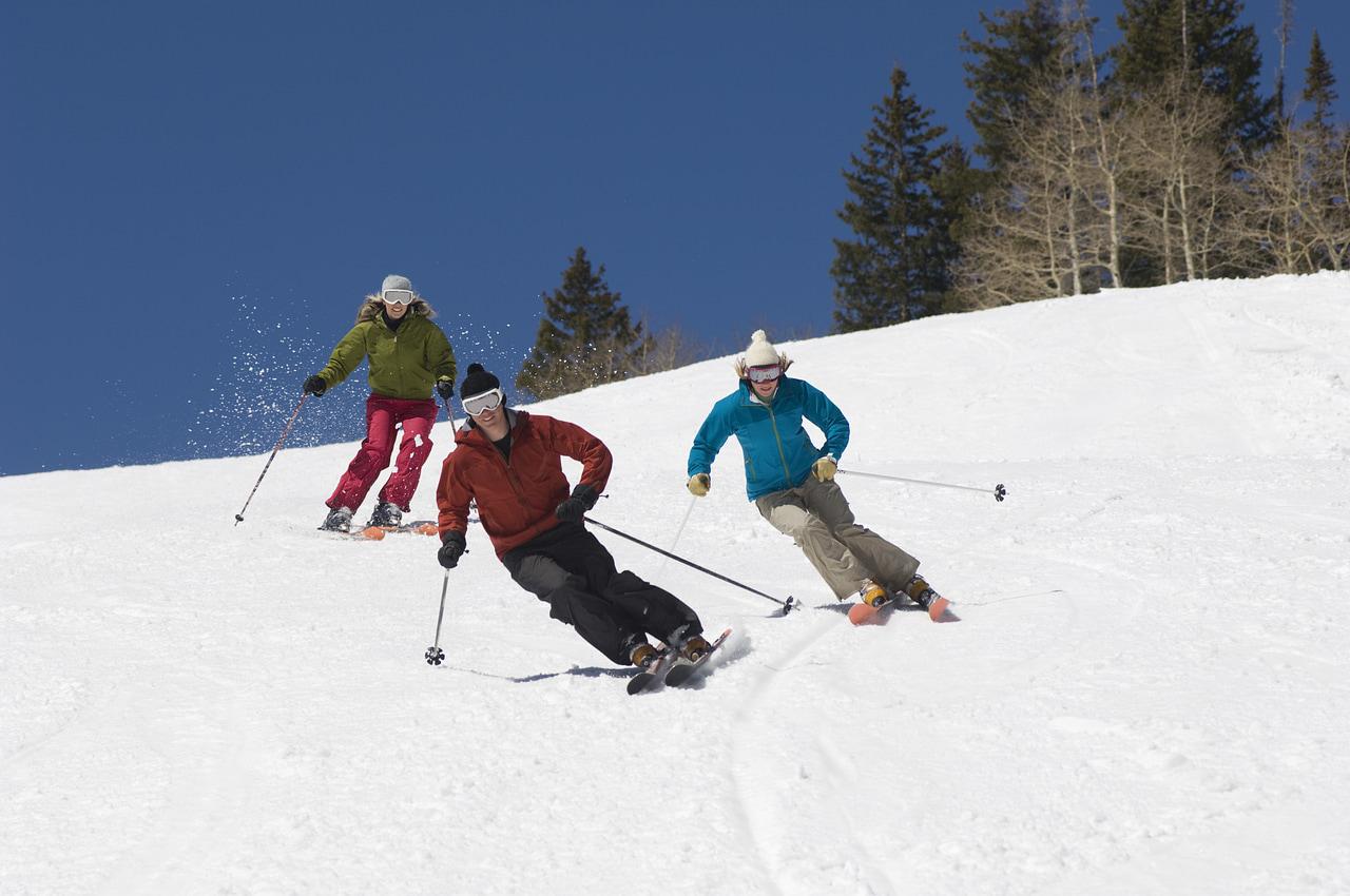 article, Skiing, and nordic skiing image