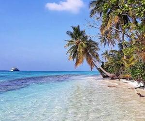 beach, Dream, and Maldives image