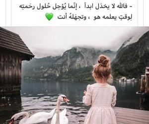 Image by Hiba Ab 🦄