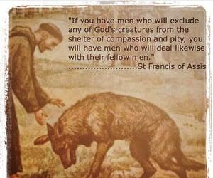 Catholic, creation, and veganism image