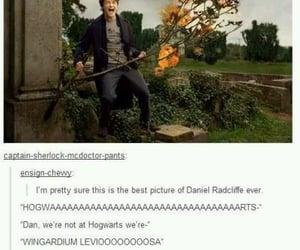 actors, hogwarts, and laugh image
