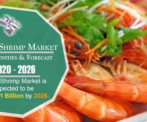 global shrimp market, shrimp market, and shrimp market by export image