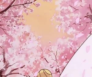 anime, petal, and pink image