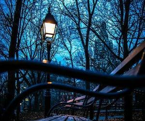 light, night, and bench image
