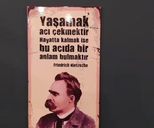 friedrich nietzsche, alıntı, and türkçe sözler image