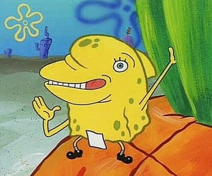 spongebob squarepants, tom kenny, and the paper image