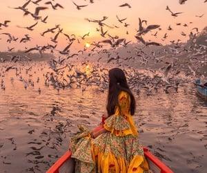 amazing, beautiful, and india image