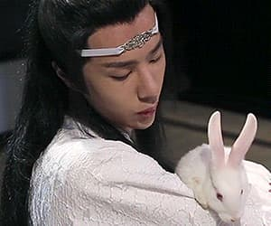 bunny, lan wangji, and gif image