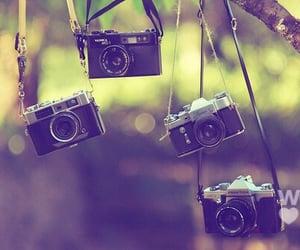 art, dreams, and cameras image