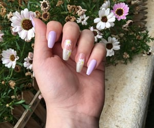 flowers, hands, and long nails image