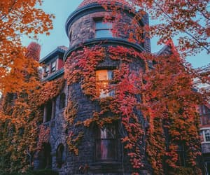 autumn, architecture, and cozy image