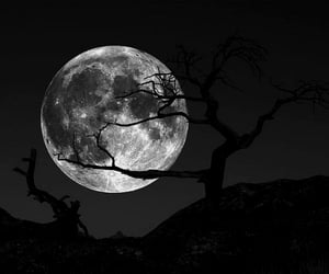 full moon, goth, and gothic image