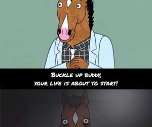 depressing, netflix, and horseman image