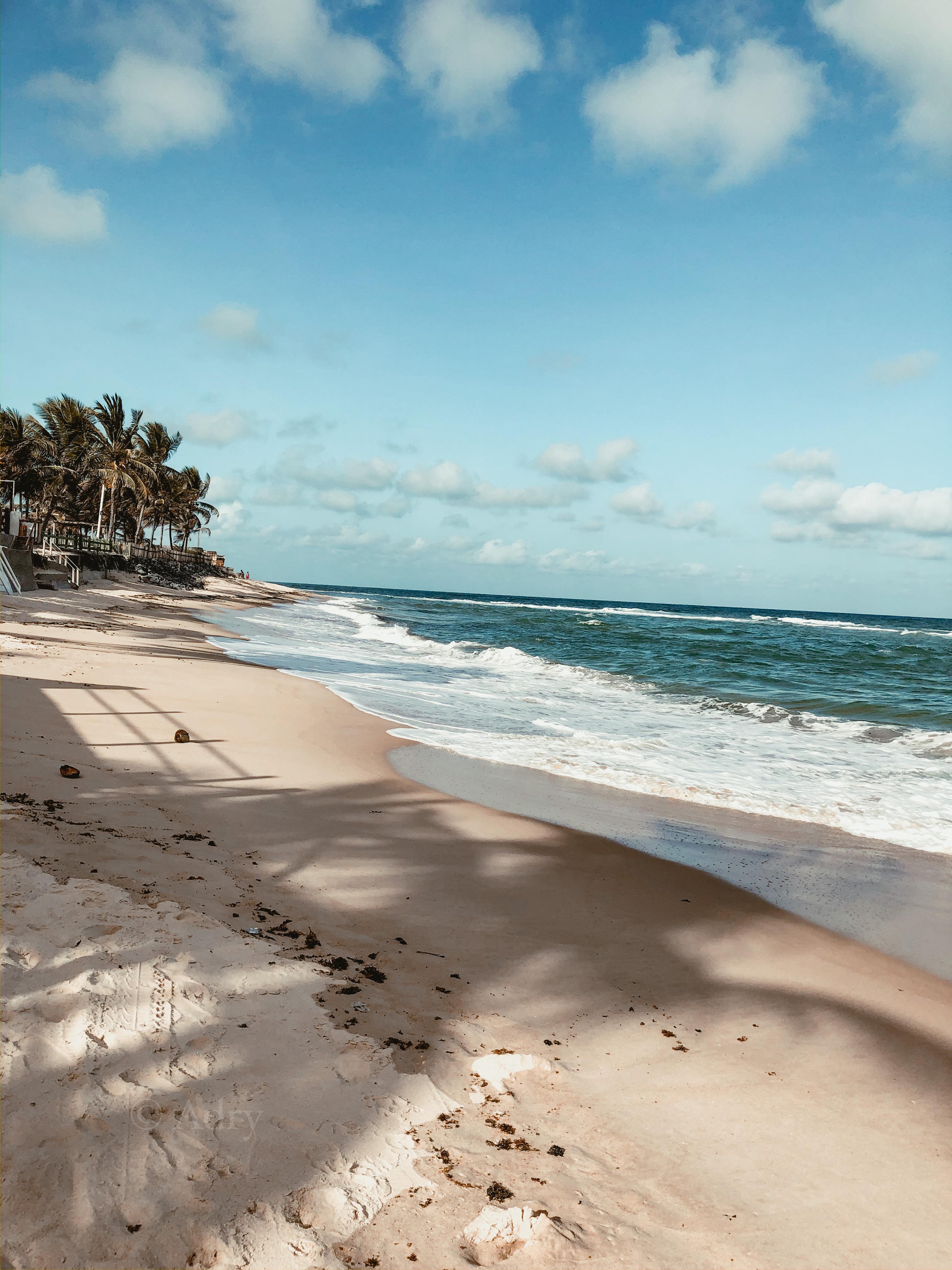 aesthetic, beach, and fun image
