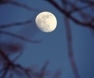 landscape, moon, and nature image