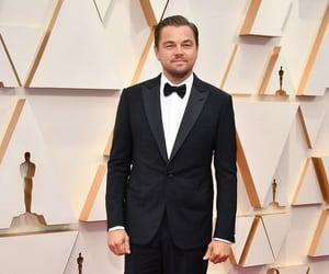 elegancia, man, and Leonardo di Caprio image