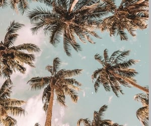 beach, calor, and holidays image