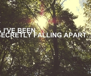 quotes, text, and falling apart image
