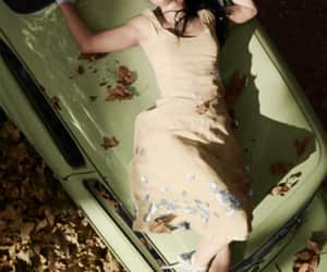amy lee, rock, and autumn image