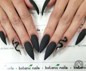 nails, black, and snake image