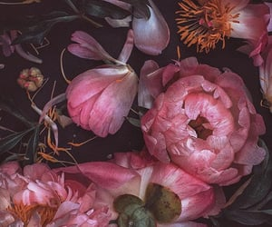 art, florals, and flowers image