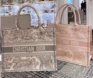 bag, borsa, and dior image