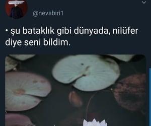 ask, çiçek, and sözler image