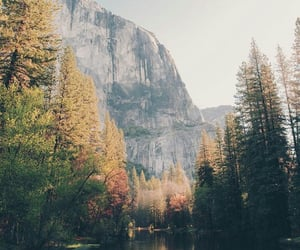 nature, travel, and usa image