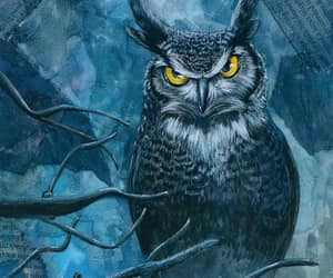 illustration, owl, and squirrel image