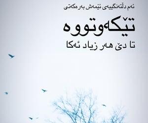 promise, kurdistan, and kurd image