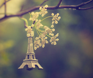 flowers, paris, and green image