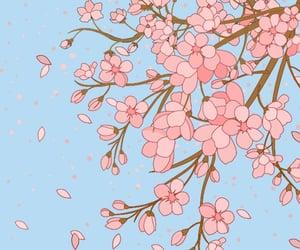 beautiful, cherry blossom, and kawaii image