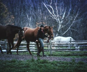 country living, equestrian, and equitation image