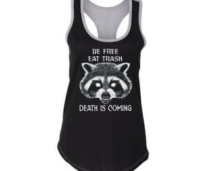raccoon and trash panda image