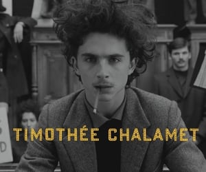 timothee chalamet, wes anderson, and the french dispatch image