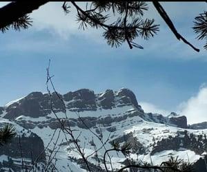 belleza, frío, and naturaleza image