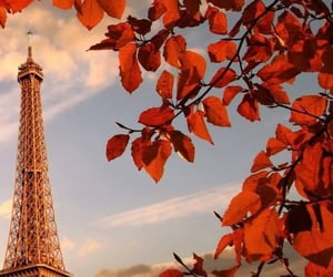 beautiful places, nature, and paris image
