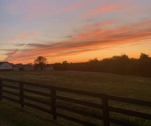 farm, fence, and orange image