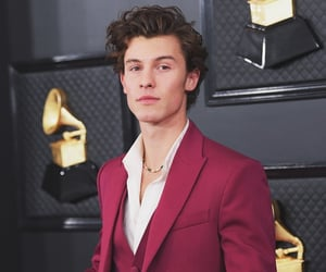 2020, mendes, and grammys image