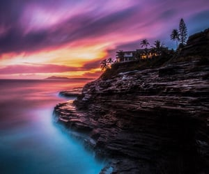breathtaking, colors, and palm trees image