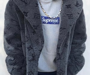 Louis Vuitton and supreme image