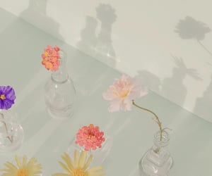 flowers, pretty, and vase image